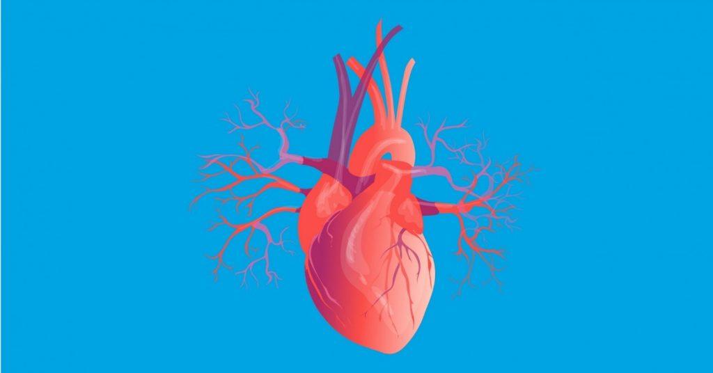 آیا میزان ضربان قلب در بیماری کرونا مطمئن تاثیر دارد