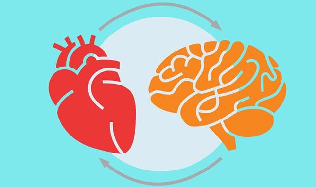 استرس و اضطراب خود را مدیریت کنید برای بهبود سامت قلب