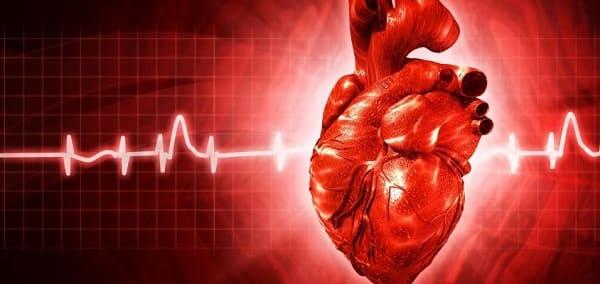 شاخص قلبی چیست؟