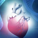 ضعف ماهیچه قلب (کاردیومیوپاتی اتساعی)