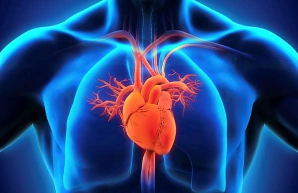 چه بیماریهای قلبی توسط جراح قلب درمان میشوند؟